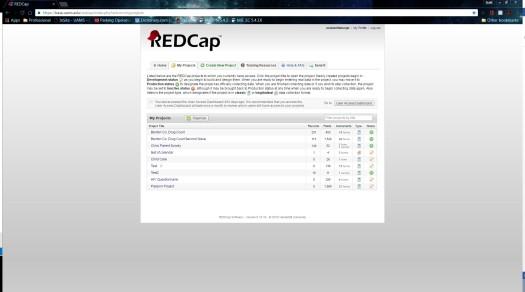 redcap-2